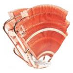 Cooler Thermaltake CL-P0472 V14-Pro