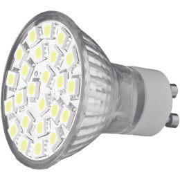 Bec Apollo CEDO-LED SMD5050 24LED 6500K, GU10