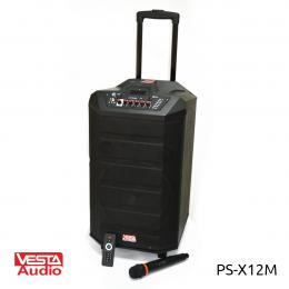 Акустика VESTA PS-X12M